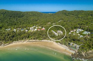 Picture of 14/24 Little Cove  Road, Noosa Heads QLD 4567
