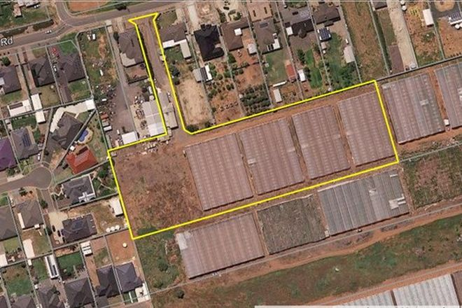 Picture of Lot 100 Sheedy Road, VIRGINIA SA 5120