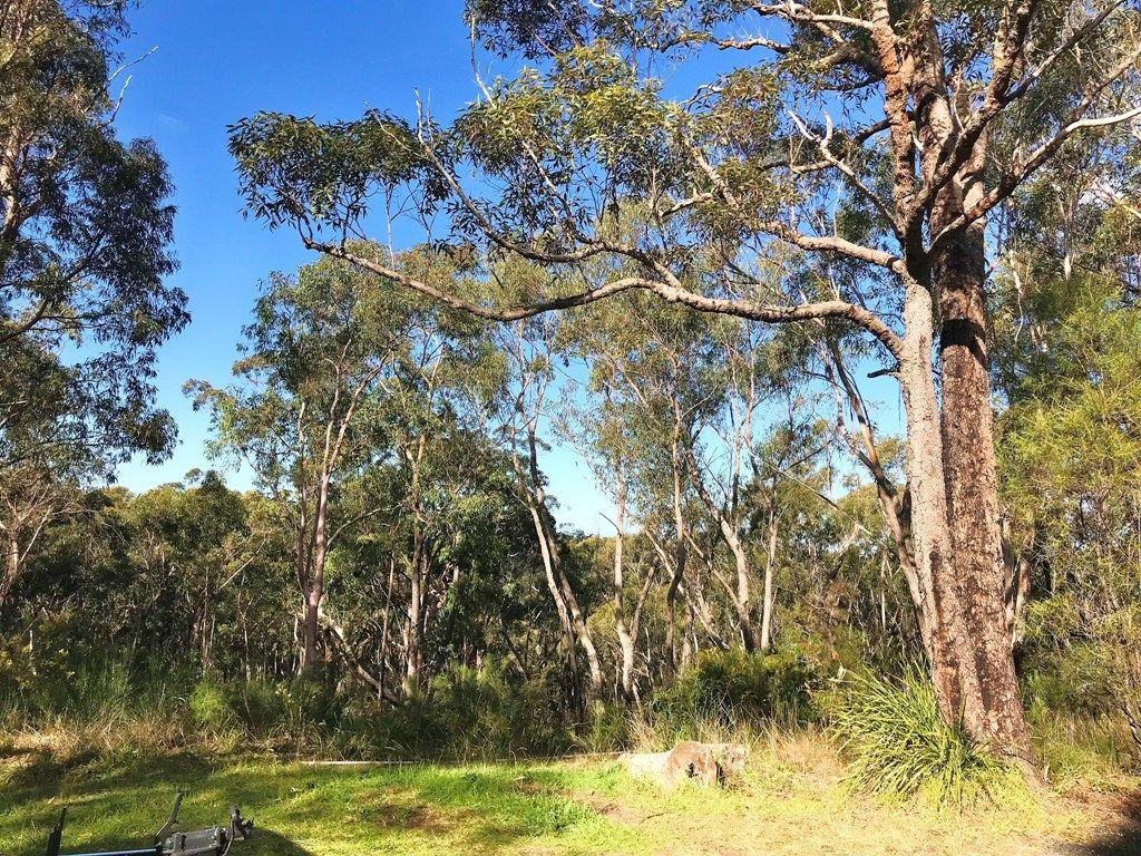 16 Eastern Avenue, Hazelbrook NSW 2779, Image 0