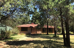 Picture of 5 Butler Drive, Gilgandra NSW 2827