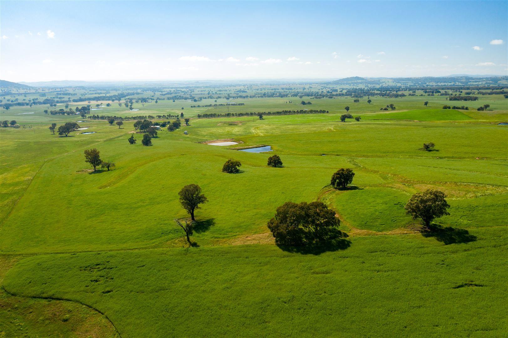 Pachmarhi Wrigleys Road, Big Springs via, Wagga Wagga NSW 2650, Image 0