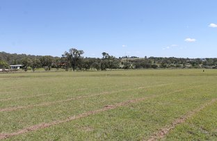 Picture of 242 & 244 Auburn Vale Road, Inverell NSW 2360