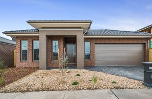 Picture of 17 Salvia Street, Mickleham VIC 3064