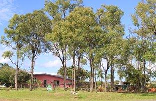 62 STREIL ROAD, Koah QLD 4881