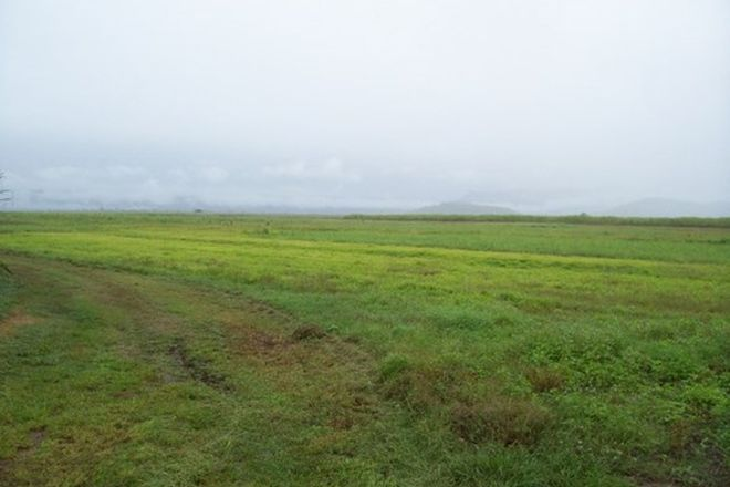 Picture of Lt 135 mancusos rd, LANNERCOST QLD 4850