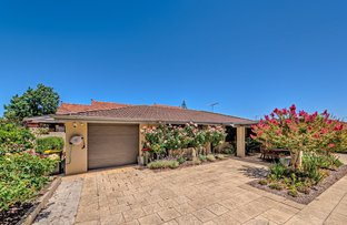 Picture of 1/11 Hill View Road, Mount Lawley WA 6050