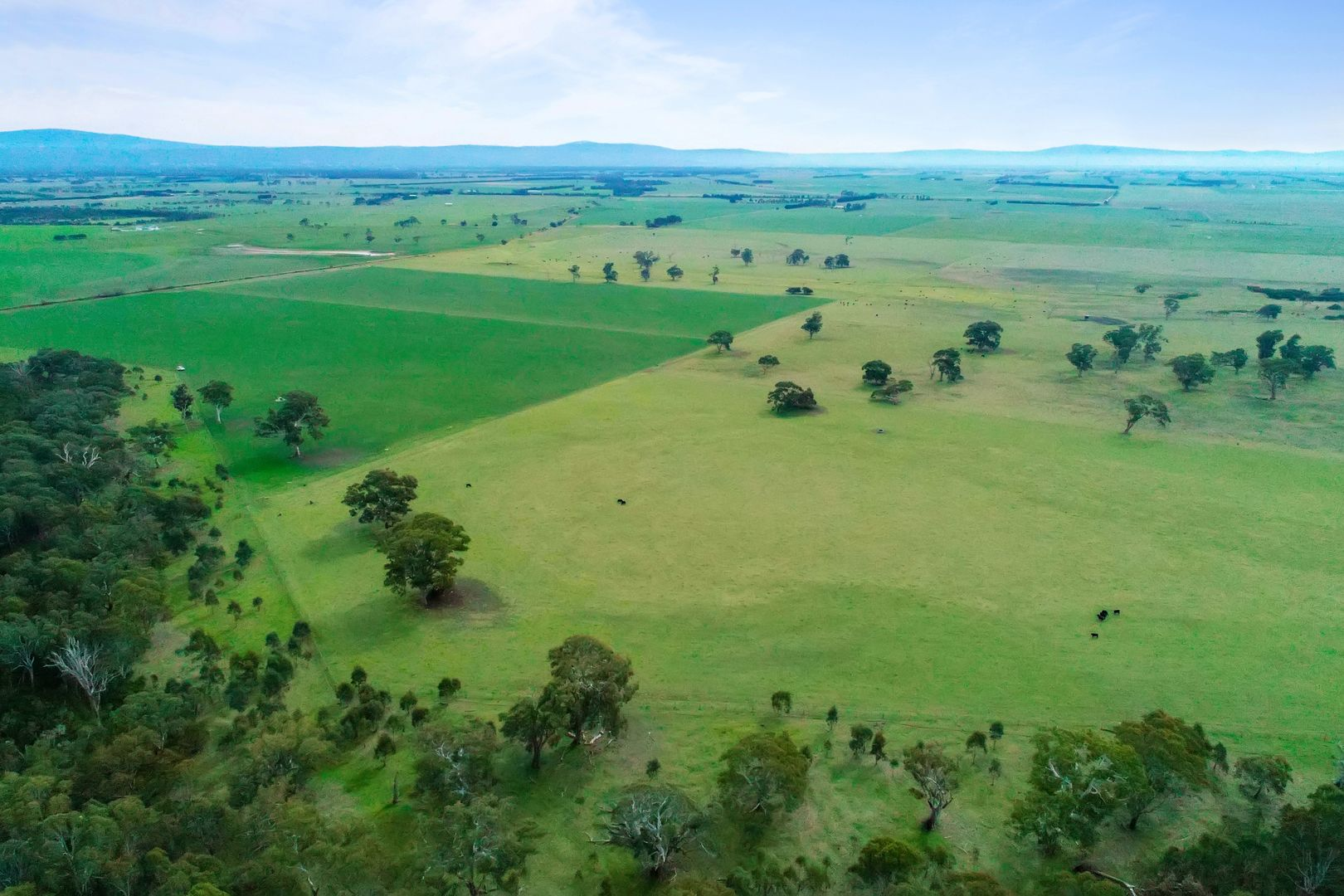 Lower cairnbrook, Glengarry VIC 3854, Image 0