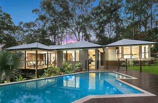 Picture of 12 Cedara Place, Buderim QLD 4556
