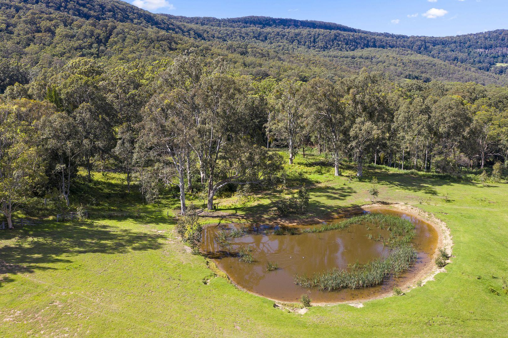 28 Gumtree Lane, Kangaroo Valley NSW 2577, Image 2