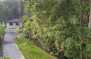 Picture of 4 Tommys Court, Buderim QLD 4556