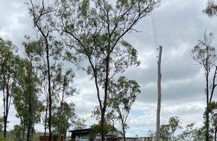 Picture of 1003 Gentle Annie Road, Raglan QLD 4697