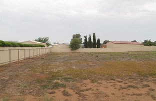 Picture of 21 & 23 Viewbank Crescent, Maitland SA 5573