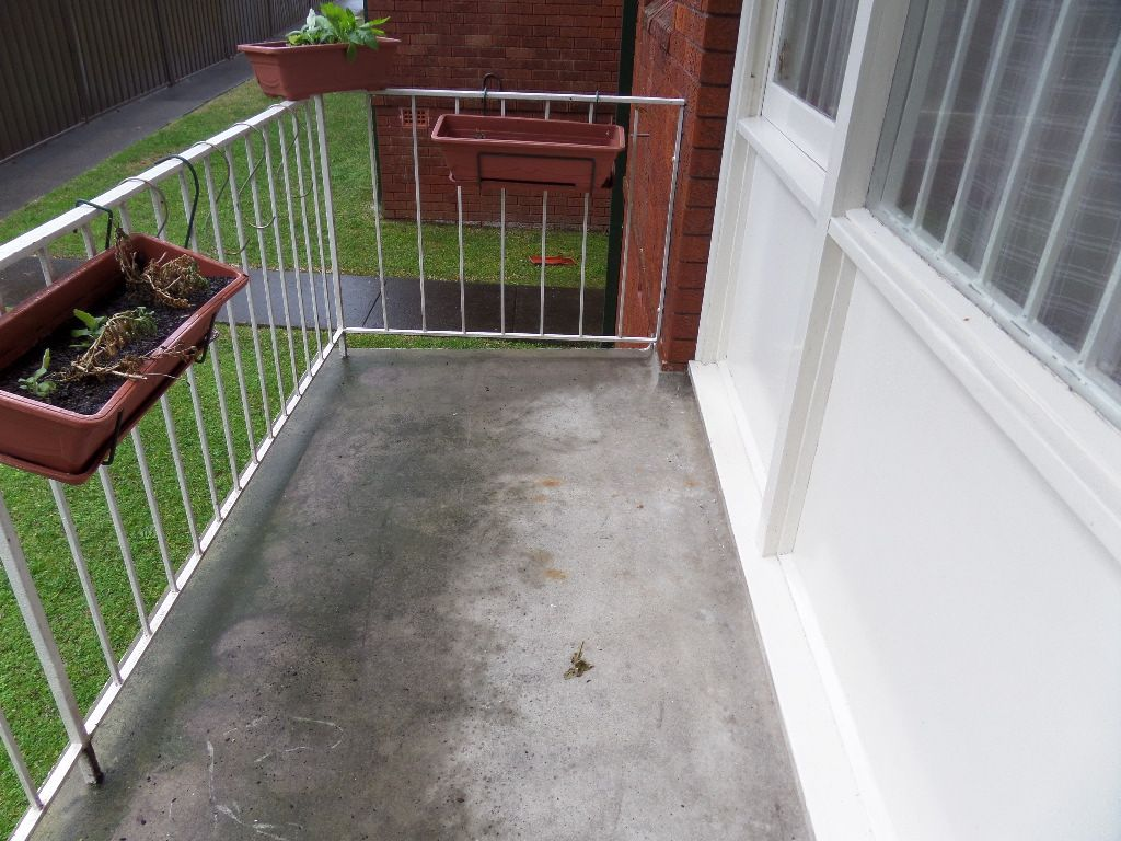 3/63 Avoca Street, Randwick NSW 2031, Image 3
