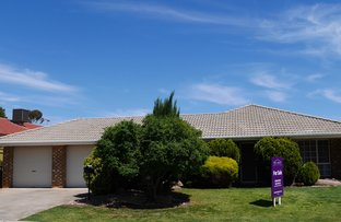 14 Rosemont Place, Salisbury Heights SA 5109