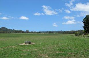 Picture of 91 Yandina Bli Bli Road, Yandina QLD 4561