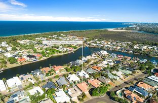 Picture of 14 Fantail Place, Wurtulla QLD 4575