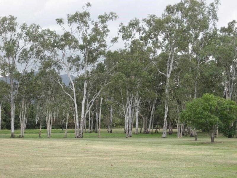 7, 155 Piralko Road, Mount Surround QLD 4809, Image 0