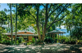 Picture of 664 Timboon Road, Bellingen NSW 2454