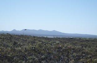 Picture of 56 Seaview Way, Hopetoun WA 6348