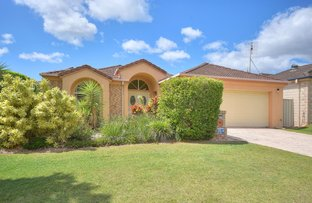Picture of 16 Fiddlewood Place, Reedy Creek QLD 4227