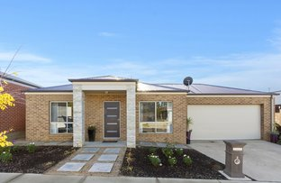 Picture of 2 Maplewood Court, White Hills VIC 3550
