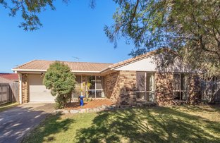 Picture of 10 Canberra Court, Brassall QLD 4305