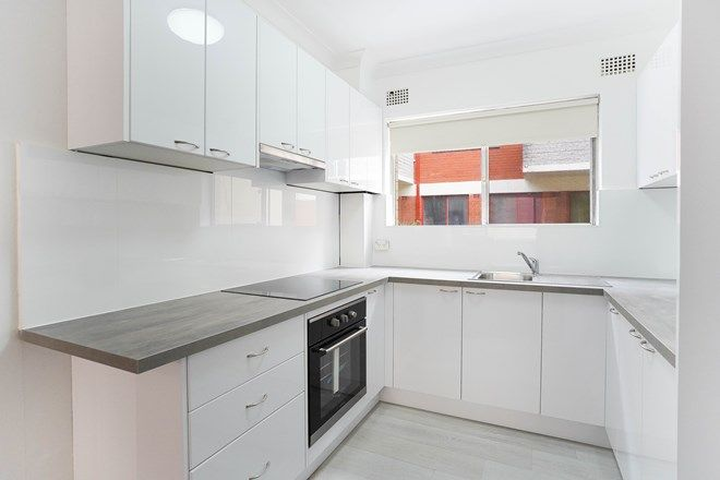 Picture of 2/117 Pacific Parade, DEE WHY NSW 2099