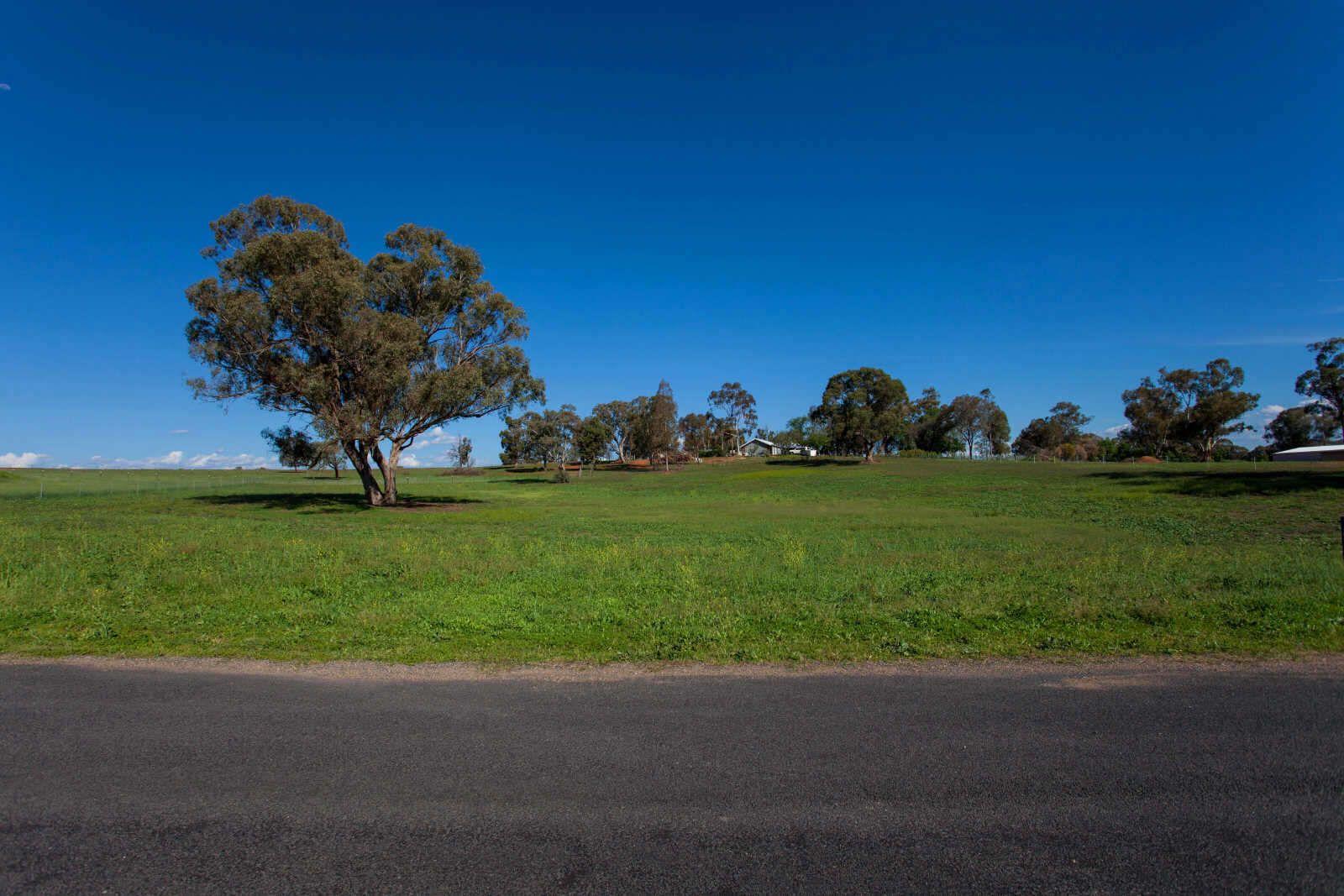 6 Pindari Grove, Wellington NSW 2820, Image 0