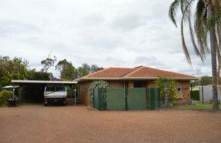 Picture of 1 Kookaburra Court, Regency Downs QLD 4341