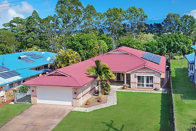 Picture of 15 McLeod Street, CONDONG NSW 2484
