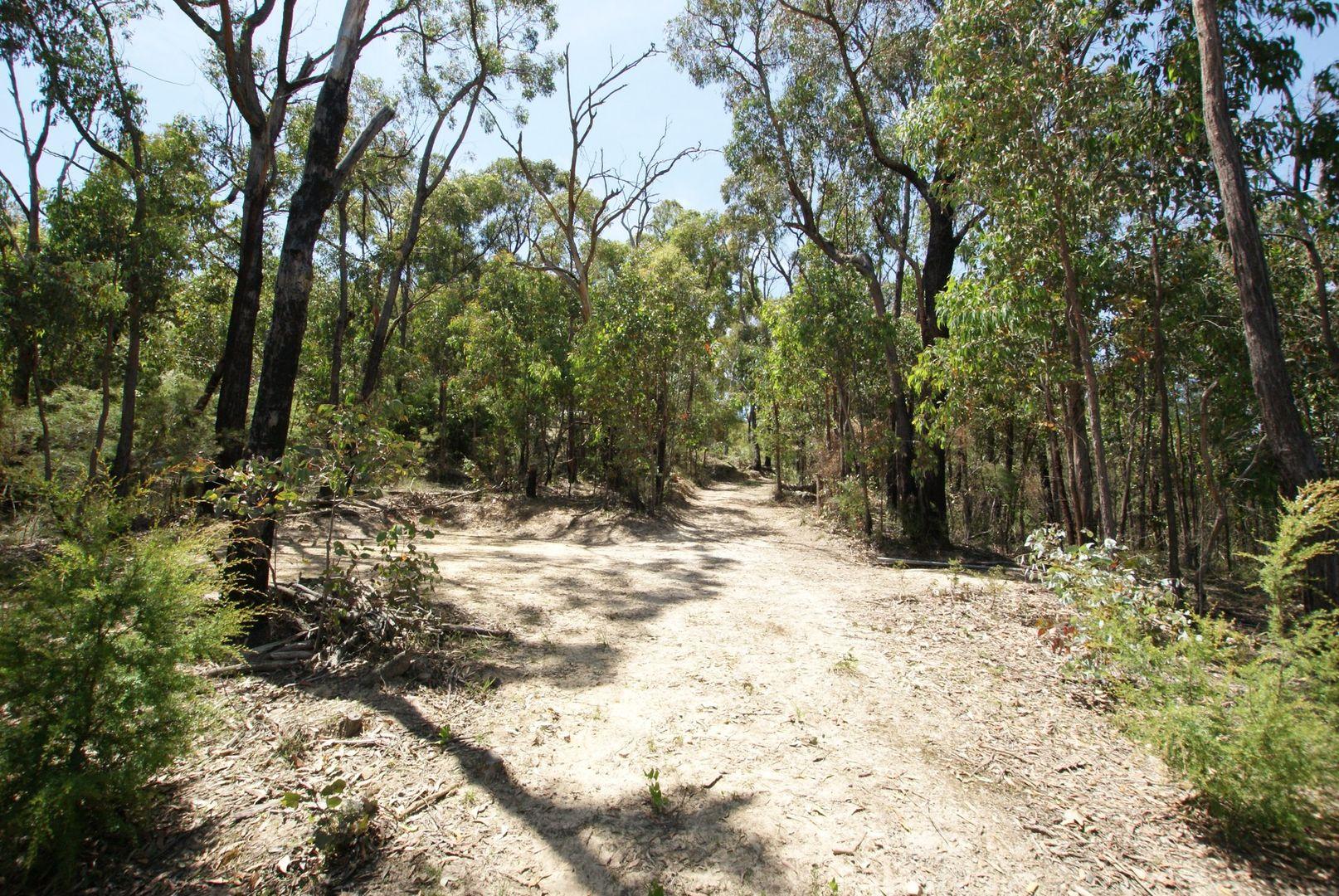 221 Lowes Road, Chum Creek VIC 3777, Image 1
