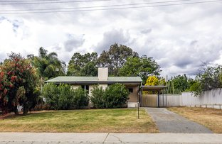 Picture of 24 Balfour Rd, Swan View WA 6056