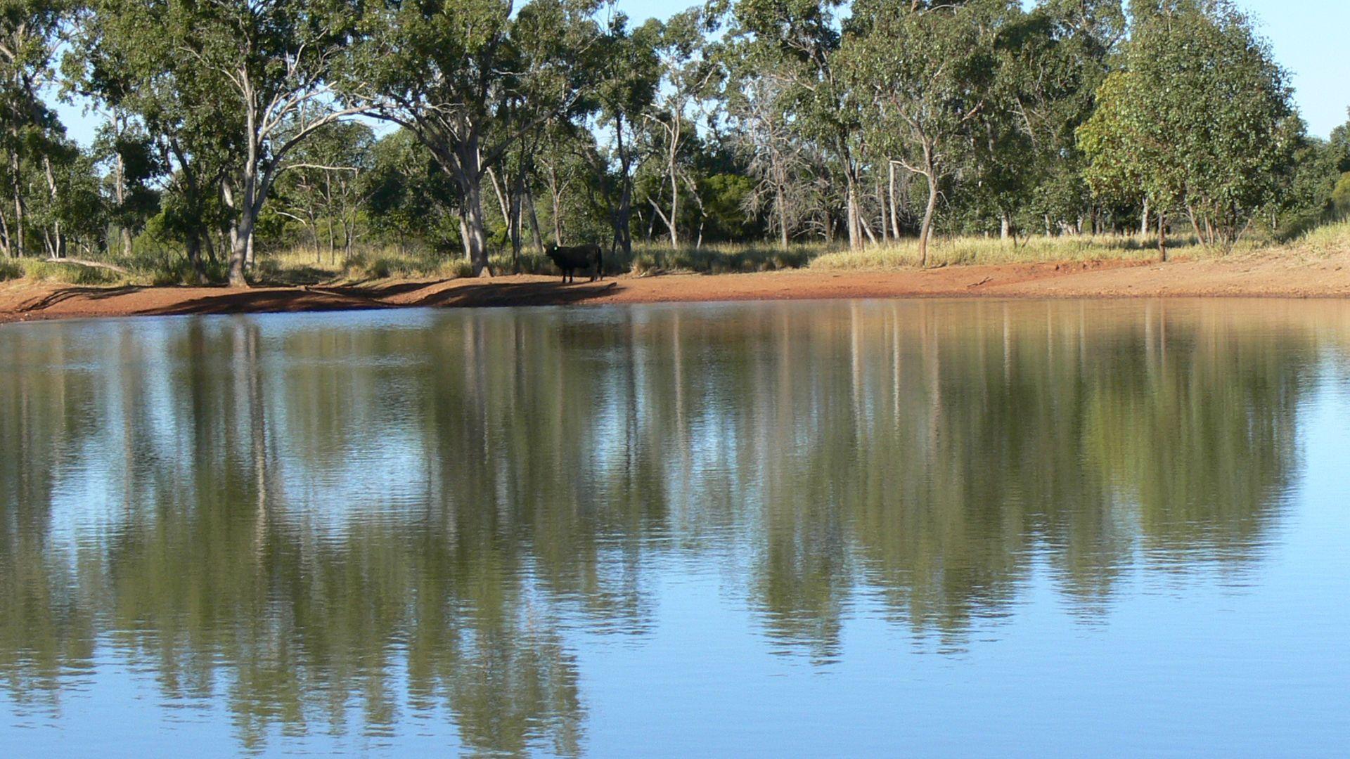 Moordale, Walgett NSW 2832, Image 1