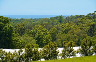 Picture of 139 Johnsons Road, Sandy Beach NSW 2456