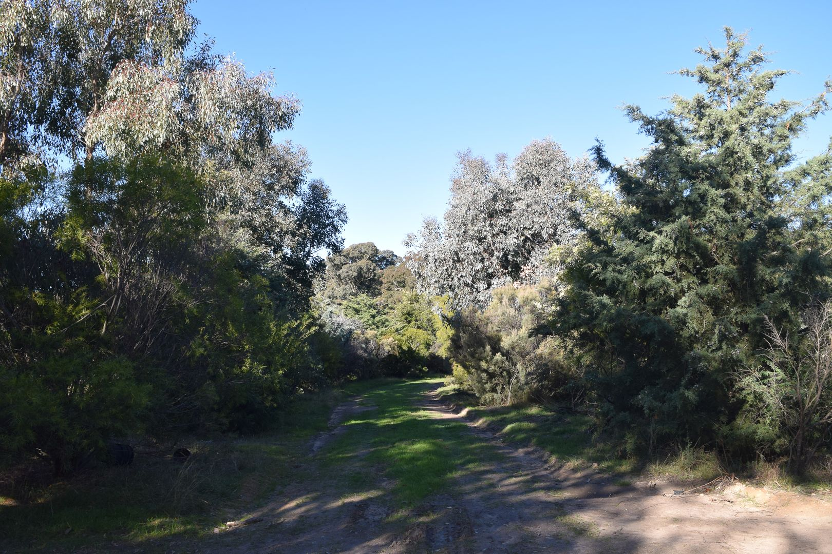 1540 Cooks Hill Road, Yass NSW 2582, Image 2