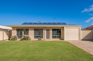 Picture of 7 Rueval Court, Port Kennedy WA 6172
