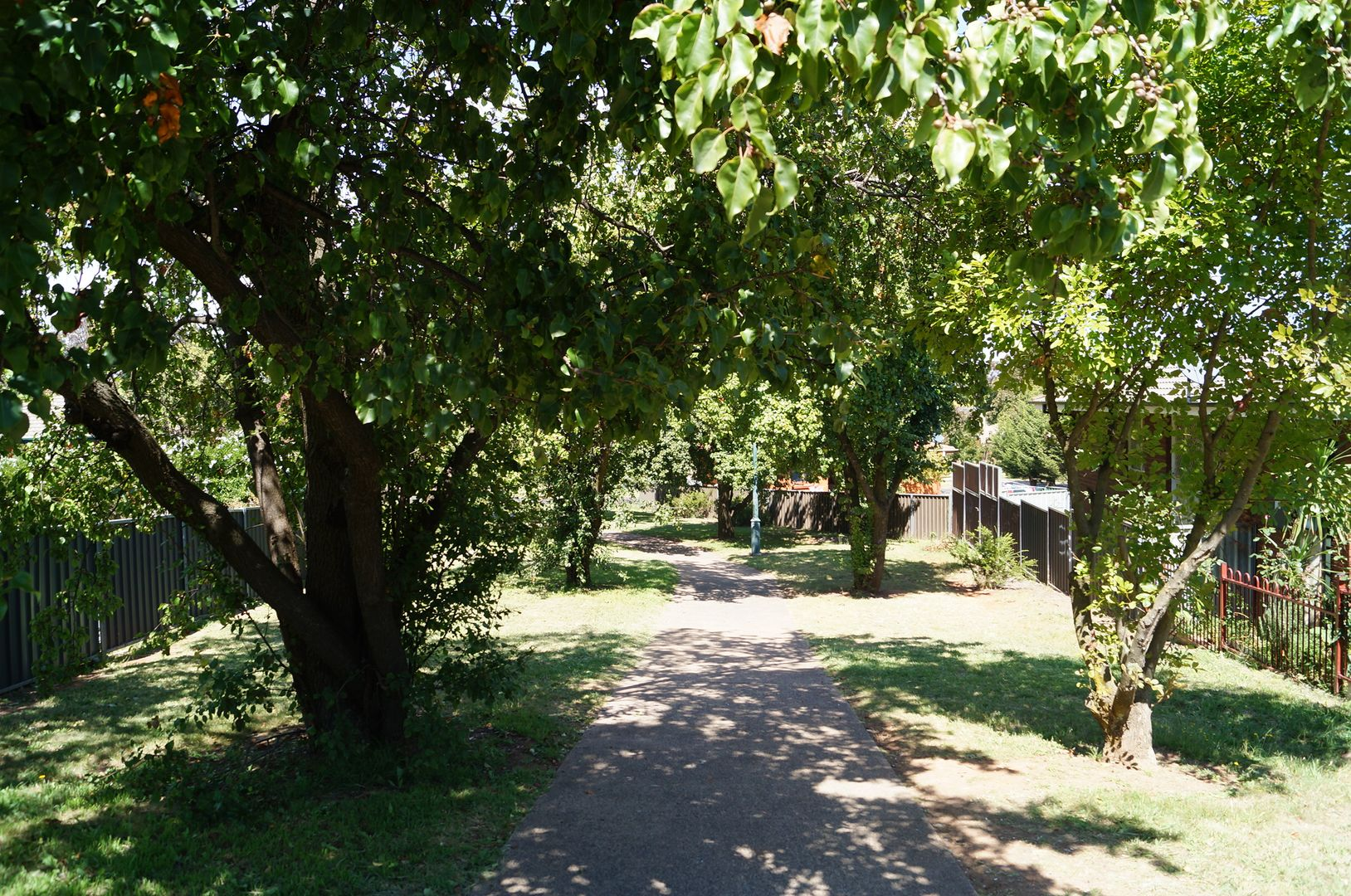 41 Leura Road, Orange NSW 2800, Image 0