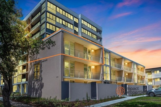Picture of 172/259 Northbourne Avenue, LYNEHAM ACT 2602