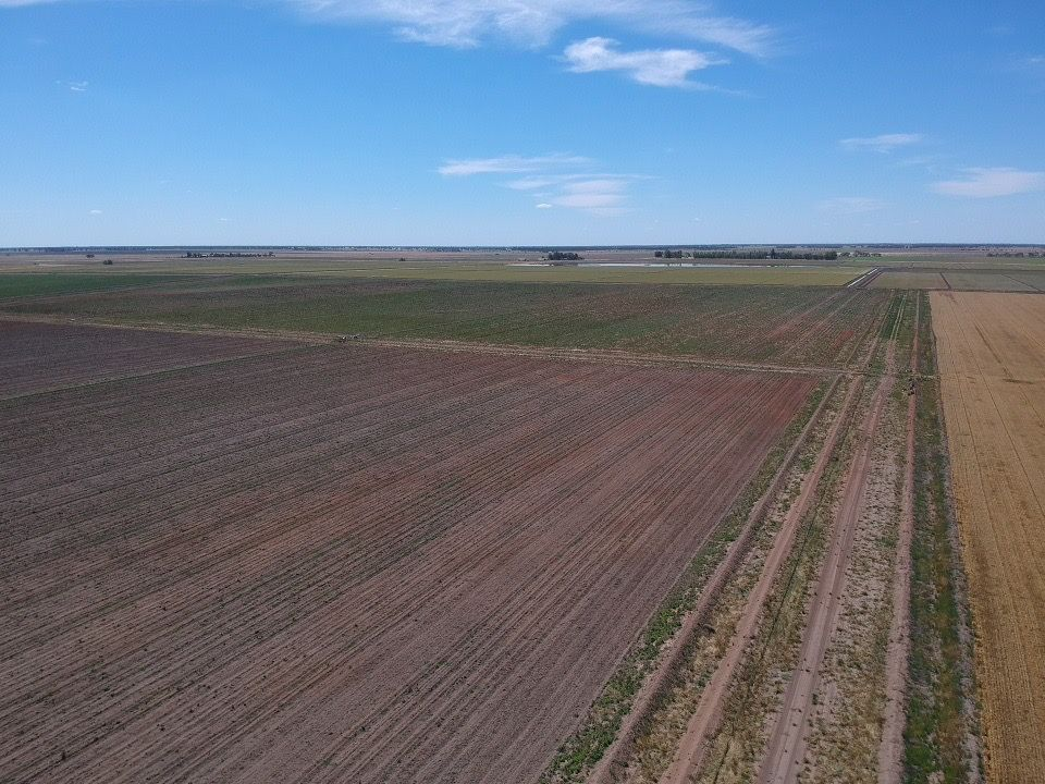 Farm 47/2072 Main Canal Road, Coleambally NSW 2707, Image 1