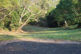 Picture of 21 Racecourse Rd, Cooktown QLD 4895