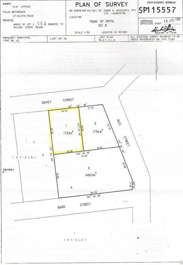 10 Fowlers Road, Emita TAS 7255, Image 1