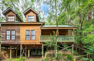 Picture of Cabin 16 17/ 2940 Salisbury Road, Salisbury via, Dungog NSW 2420