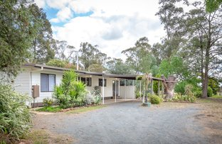 Picture of 165 Walsh Road, Katandra VIC 3634