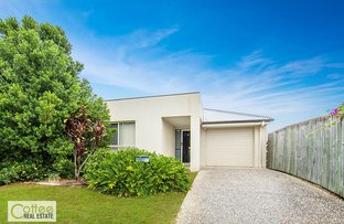 Picture of 3 Trenton Court, Bracken Ridge QLD 4017