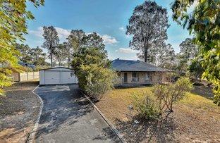 9 Elderberry Drive, Jimboomba QLD 4280