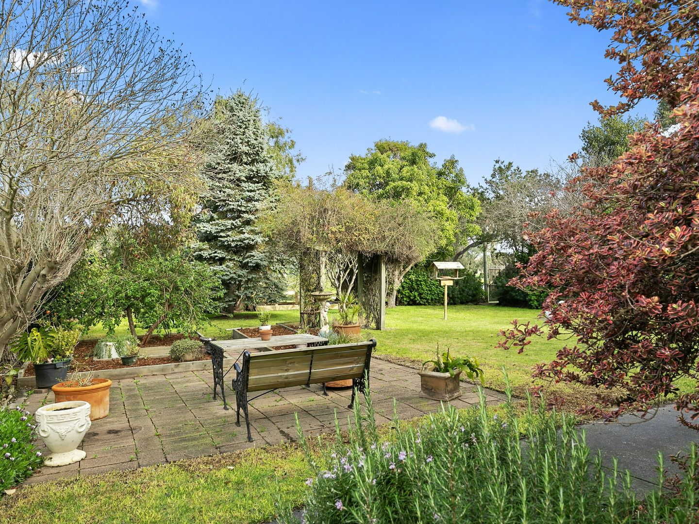 187 Country Club Drive, Clifton Springs VIC 3222, Image 1