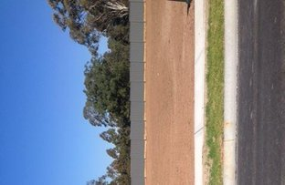 Lot 1922 Maidenhair Avenue, Leppington NSW 2179