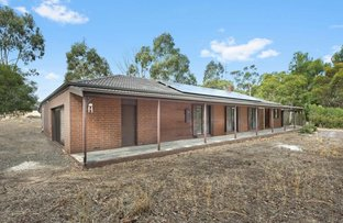 Picture of 41 Lindsay Avenue, Avoca VIC 3467