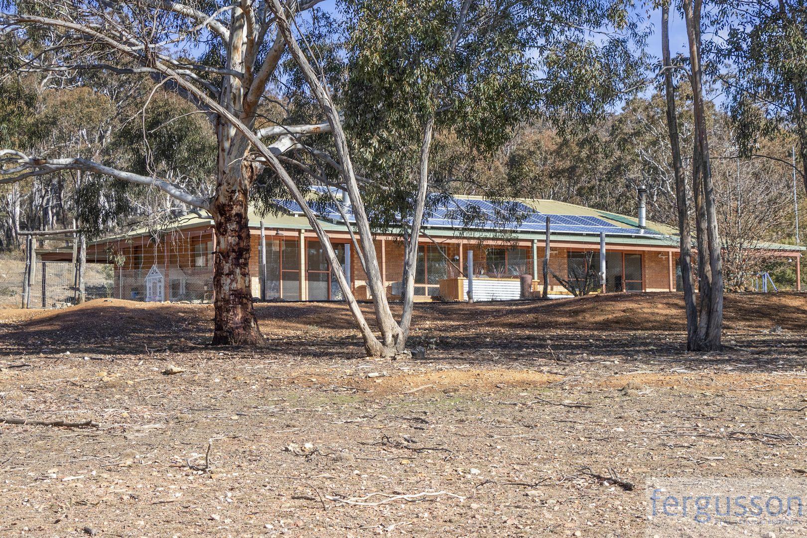 82 Collins Road, Numeralla NSW 2630, Image 0