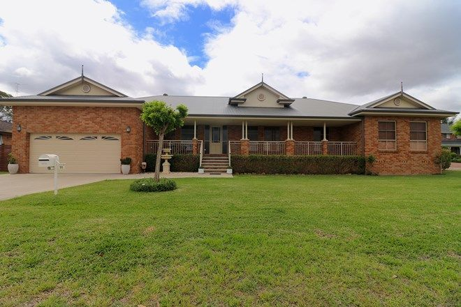 Picture of 50 Greenwood Avenue, SINGLETON NSW 2330